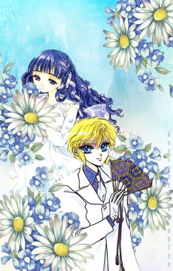 noktom blue daisy